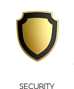 icon_security